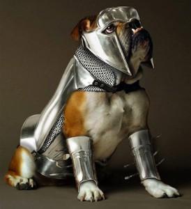 Sir Pooch