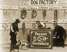 dogfactory1904-01